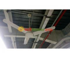 BRB Ceiling Fan
