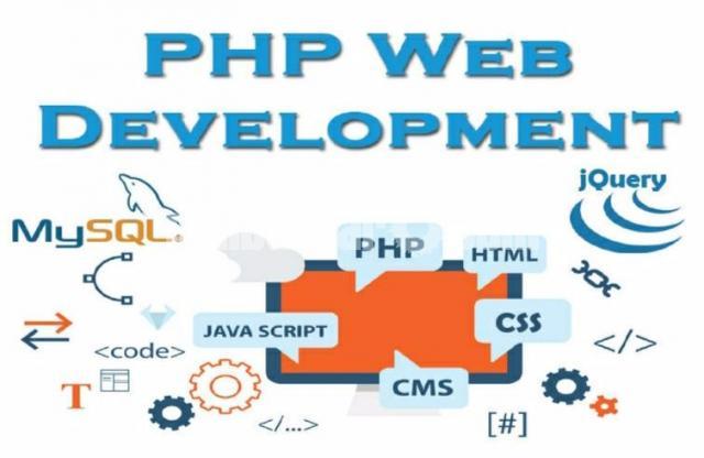 professional webdeveloper - 1/3
