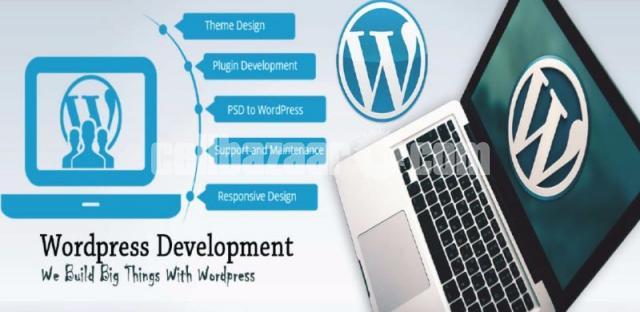 professional webdeveloper - 3/3