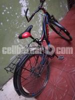 FitToo Brand Bicycle
