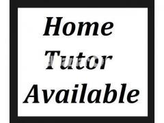 Female home tutor/teacher