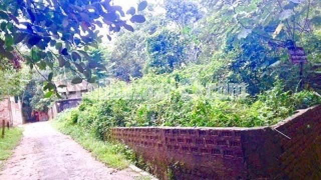 Housing plot in Khasaripara - 1/2