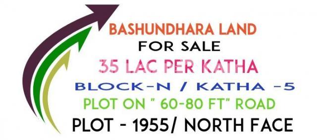 bashundhara land - 1/1