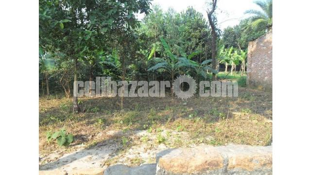 Readey Plot at Bogra - 1/1