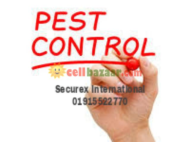 Pest Control - 1/1