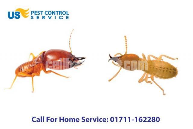 Termite Control Service - 1/5