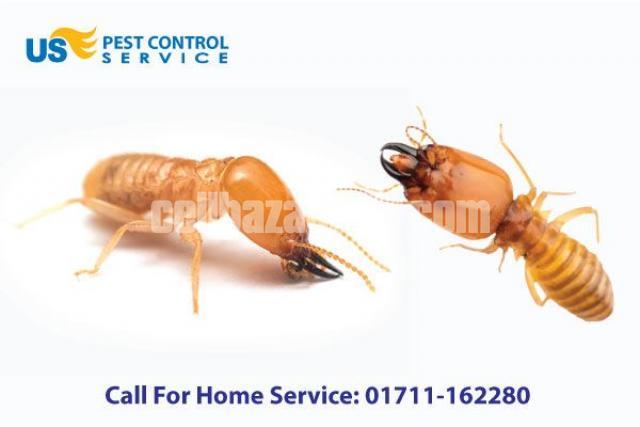 Termite Control Service - 2/5