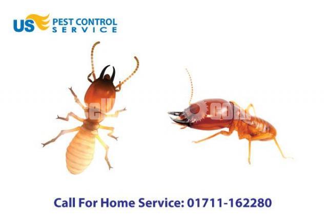 Termite Control Service - 3/5