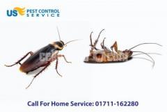 Cockroach Control Service - Image 3/5