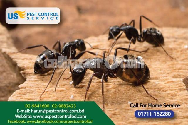 Pest Control - 1/4