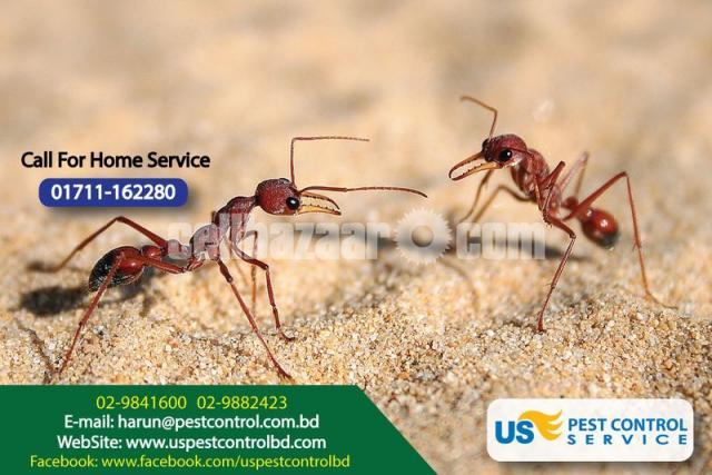 Pest Control - 2/4