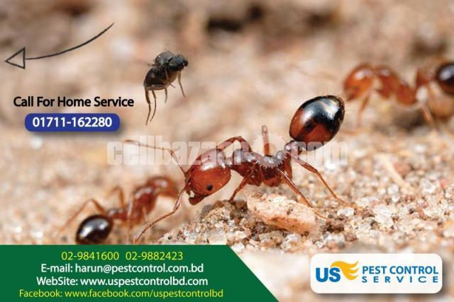 Pest Control - 3/4