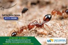 Pest Control - Image 3/4