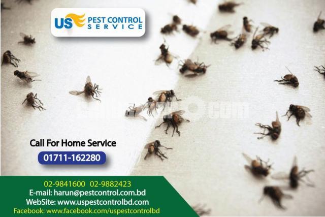 Pest Control - 4/4