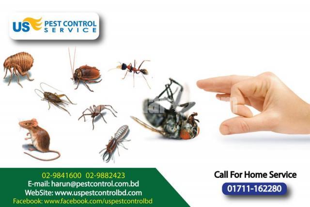 Rat and Bedbug Control - 2/2