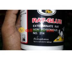 Rat Glue Bosny - Image 4/5