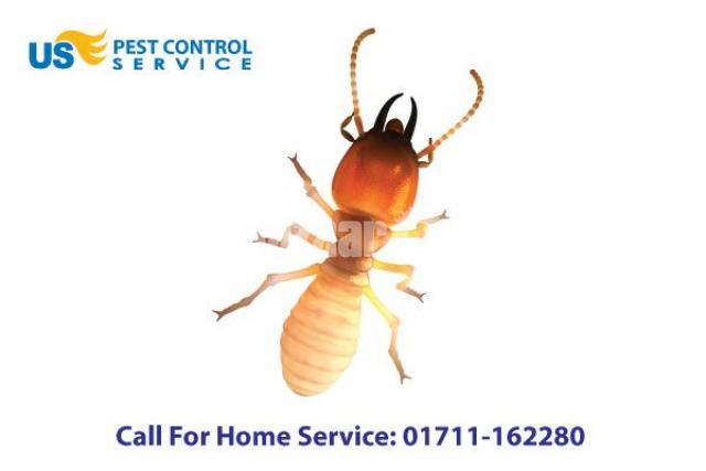 Termite Control - 1/5