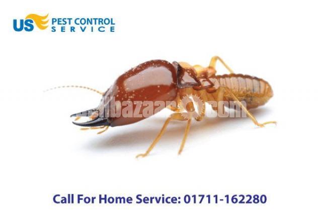 Termite Control - 2/5