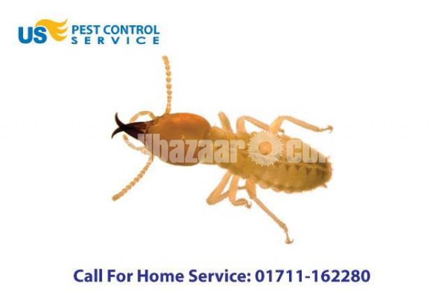 Termite Control - 3/5
