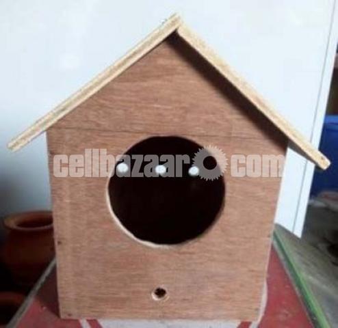 Bird House - 1/1