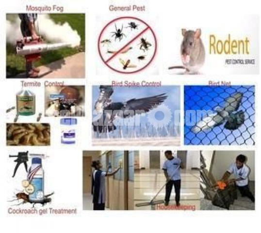 Pest control & cleaning service - 2/4