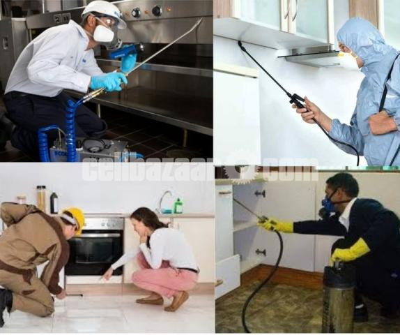 Pest control & cleaning service - 4/4