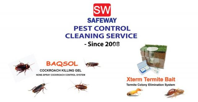House Pest Control Service - 1/1