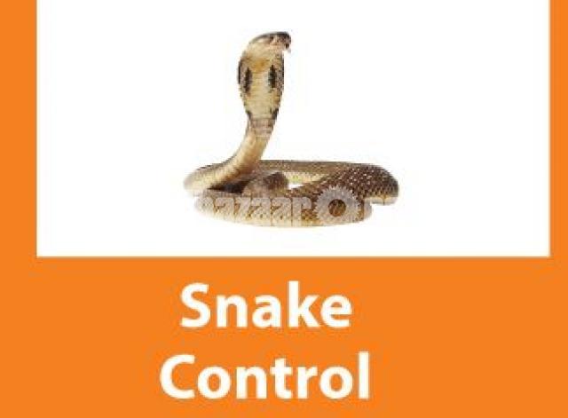 Snake Control Service - 1/1