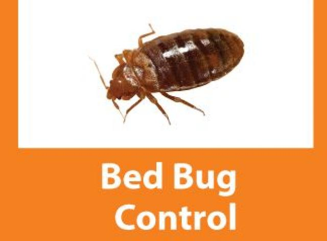Bed bug and Cockroach Control - 1/2