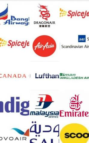 Indian domestic air ticket - 1/3