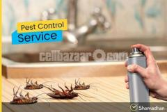 Best Residential Pest Control in Dhaka