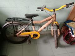 Duranto Bicycle