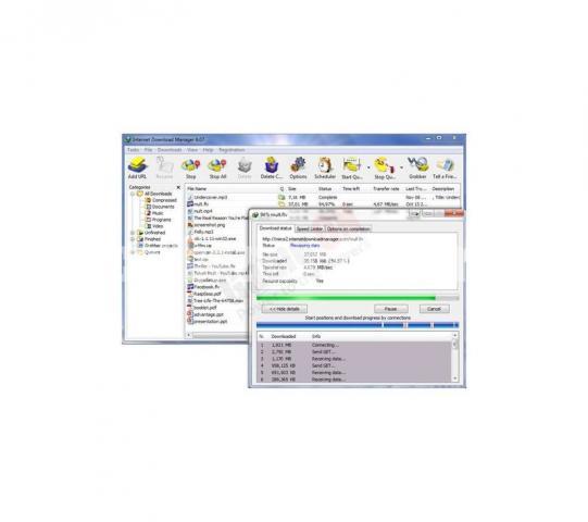 Internet Download Manager (Digital Key) – 1PC/1Year License - 2/5