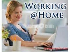 Legitimate On line Job opening with basic computer knowledge - Image 3/4