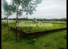 5 katha ready land in hemayedpur, Dhaka