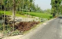 জমি বিক্রয় হবে । ২ বিঘা মোংলা পৌরসভার মধ্যে।