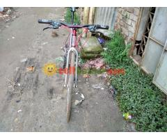 Cycle (new condition)