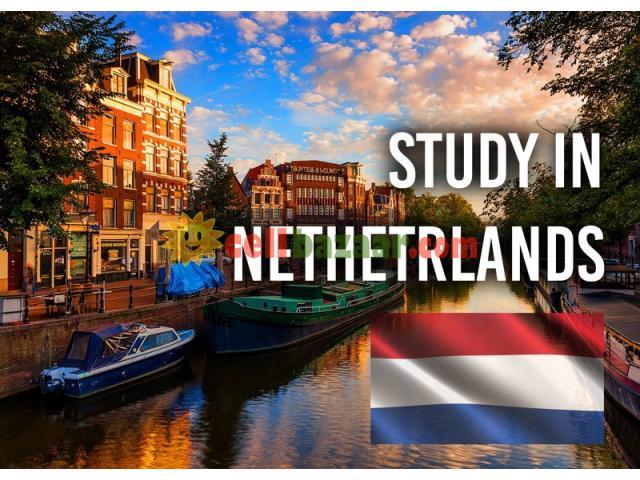 Study in Netherlands - 1/1