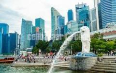 SPOUSE VISA JOB IN SINGAPORE