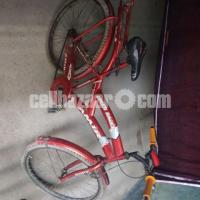 26' Bicycle