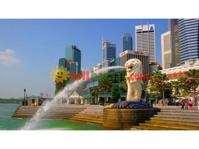 VISIT SINGAPORE 3 NIGHTS 4 DAYS 02 PERSONS - 2/2