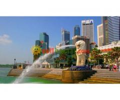 VISIT SINGAPORE 3 NIGHTS 4 DAYS 02 PERSONS