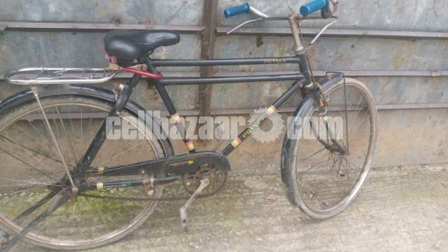 Meghna cycle - 1/1