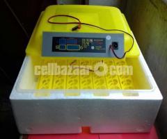 Digital incubator 56 eggs