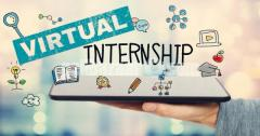 Internship (Virtual)