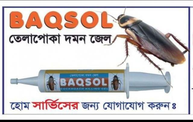 BAQSOL Cockroach Killing Gel - 1/1