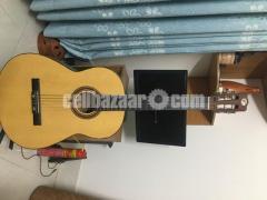 Nylon Strings Acoustic Guitar