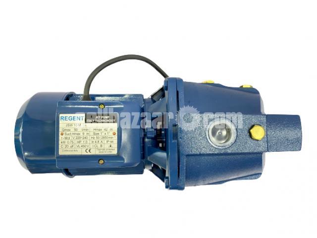 Water Pump 1HP - Regent - 2/6
