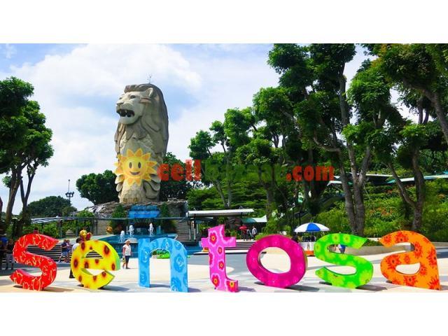 SINGAPORE VISA REQUIREMENTS - 1/1