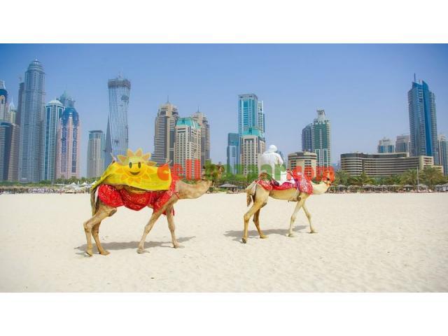 3 NIGHT PACKAGE IN DUBAI - 2/2
